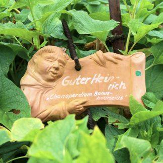 Gartenstecker MÖNCH BERTHOLD für Gewürze H 10 cm