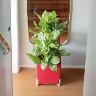 Pflanzkübel MARNY rot eckig H 45 cm
