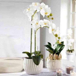 Kunstblume ORCHIDEE mit ERDE H 65 cm