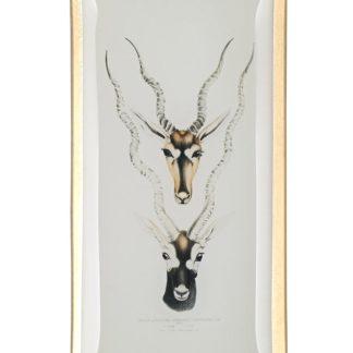 Glasteller GiftCompany LOVE PLATES ANTILOPENKÖPFE 10x0,8x21 cm