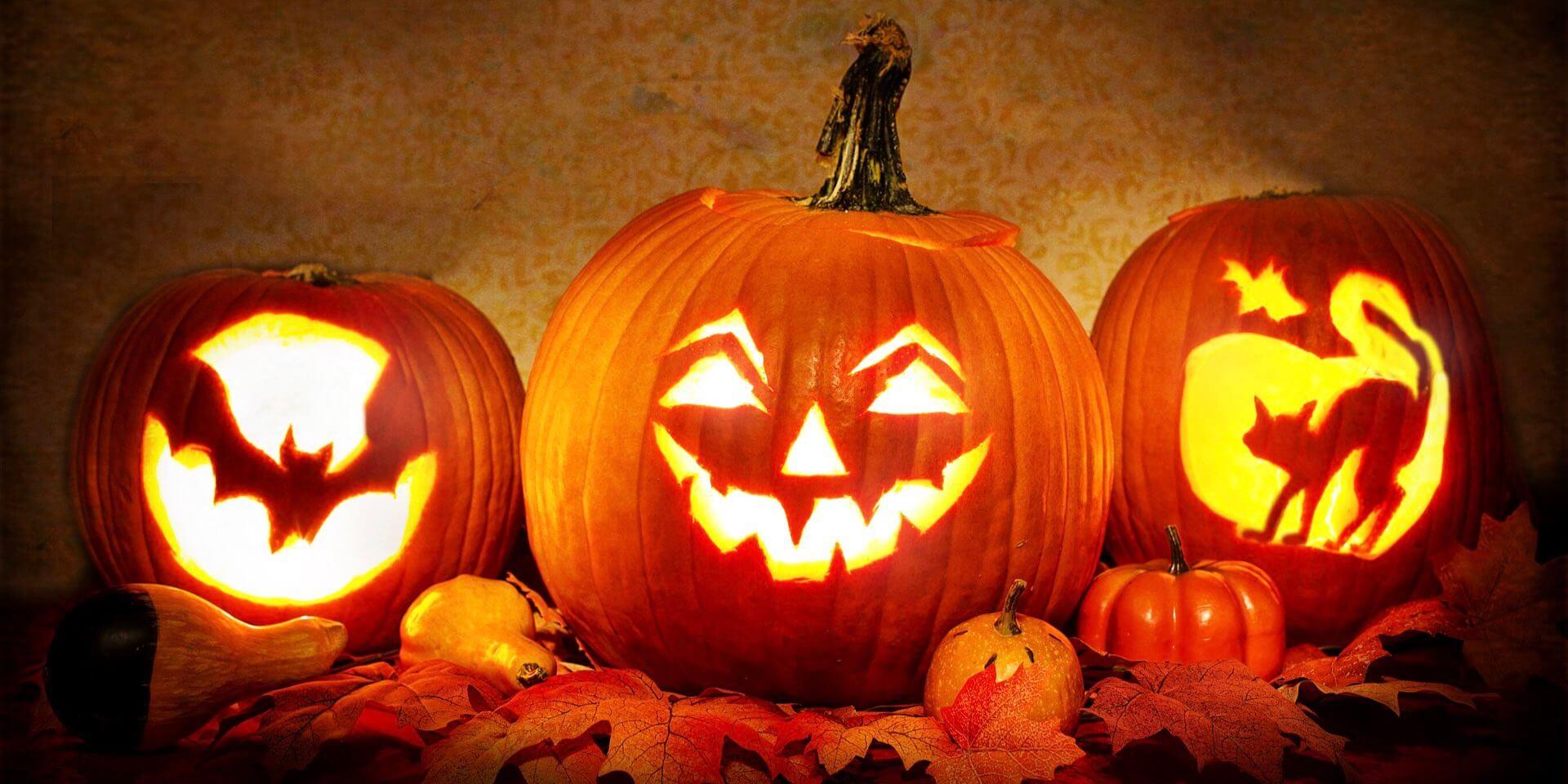 Halloween Deko für Garten und Haus