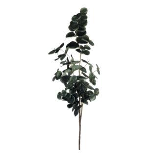 Eukalyptus Zweig ASA H 45,0 cm